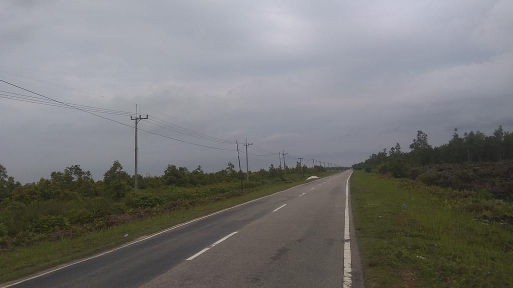 Jalan Lintas Kalimantan di Katingan